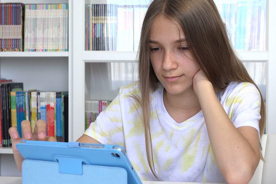 Adolescent Girl on Internet